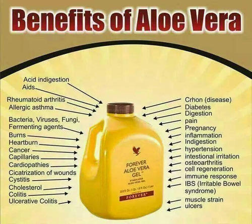 The Secret Of Our Aloe Vera Gel And Why You Need It Forever Living Natural And Organic Products